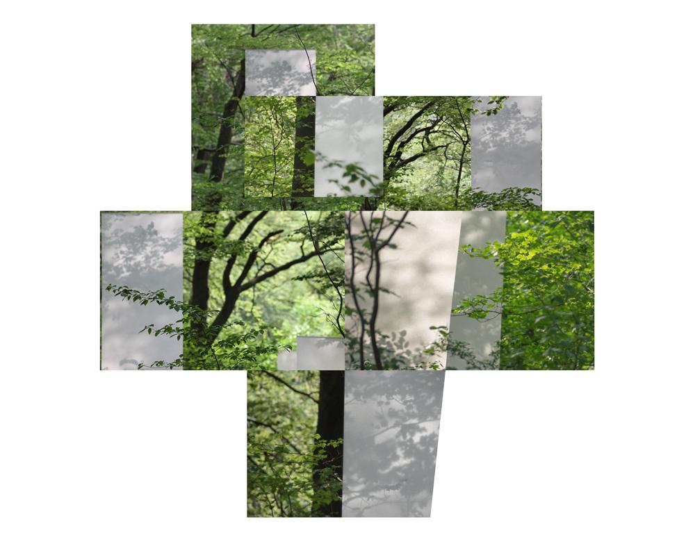 papierwaldcollage3